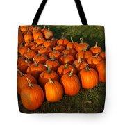 Pumpkin Piles Tote Bag