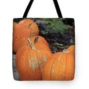 Pumpkins Galore V2 Tote Bag