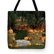 Pumpkins Under The Palms Tote Bag