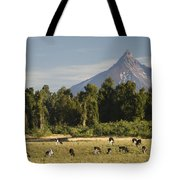 Puntiagudo Volcano In The Background Tote Bag