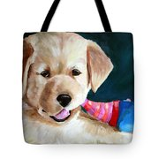 Pup And Toy Tote Bag