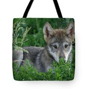 Pup In The Grass Tote Bag
