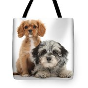 Puppies Tote Bag