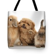 Puppy And Rabbits Tote Bag