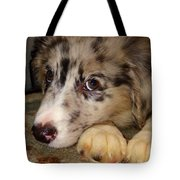 Puppy Face Tote Bag