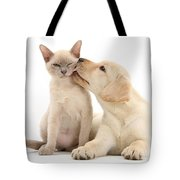 Puppy Licking Cat Tote Bag