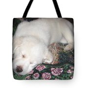 Puppy Nap Tote Bag