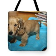 Puppy On Blue Blanket Tote Bag
