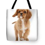 Puppy Trotting Foward Tote Bag