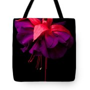 Purple And Pink Beauty Tote Bag