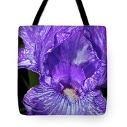 Purple And White Stiped Iris Tote Bag