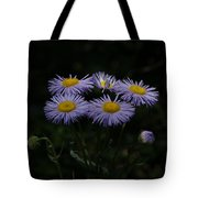 Purple Asters Tote Bag
