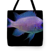 Purple Chromis Tote Bag