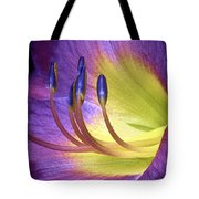 Purple Daylily Tote Bag