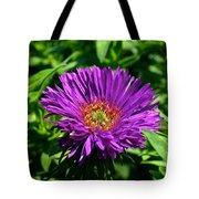 Purple Dome New England Aster Tote Bag