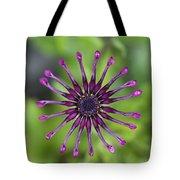 Purple Flower In Bloom Tote Bag