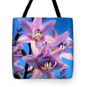 Purple Hosta Blooms Tote Bag