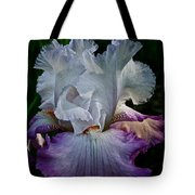 Purple Hues Tote Bag