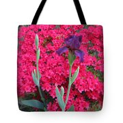 Purple Iris In Pink  Tote Bag