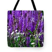 Purple Lavender Flower In Bloom  Tote Bag