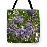 Purple Lilacs Tote Bag