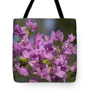 Purple Of The Bougainvillea Blossoms Tote Bag