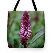 Purple Parfait Tote Bag