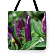Purple Pepper Life Cycle  Tote Bag