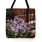 Purple Phlox  Tote Bag