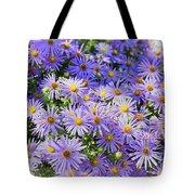 Purple Reigns Tote Bag