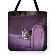 Purple Resplendent Tote Bag