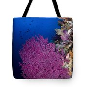 Purple Sea Fan In Raja Ampat, Indonesia Tote Bag