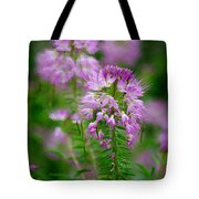 Purple Serenade Tote Bag