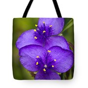 Purple Spiderwort 1 Tote Bag