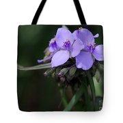 Purple Spiderwort Flowers Tote Bag