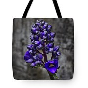 Purple Splendor Tote Bag