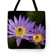 Purple Water Lilies Tote Bag