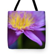 Purple Water Lily Petals Tote Bag