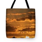 Put Another Day To Rest Tote Bag