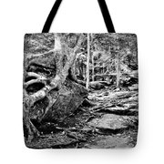 Puttin Down Roots Tote Bag