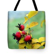 Pyracantha Berries Life Tote Bag