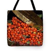 Pyracantha Berries Tote Bag