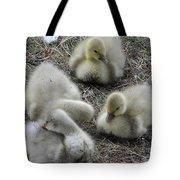 Quadruplets Qp Tote Bag