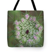 Queen Anne's Lace Flower Partly Open With Dew Tote Bag