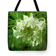 Queen Anne's Lace Tote Bag
