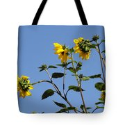Quicksilver Sun Tote Bag