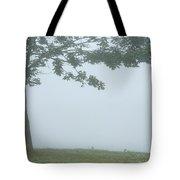 Quiet Fog Rolling In Tote Bag