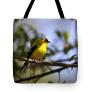 Quiet In The Shadows Tote Bag
