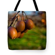 Quince In The Early Moning Sun Tote Bag