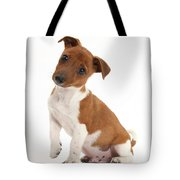 Quizzical Puppy Tote Bag